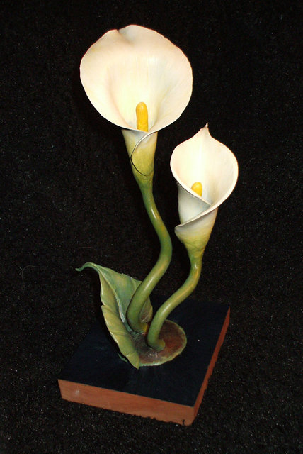 calla lily.jpg