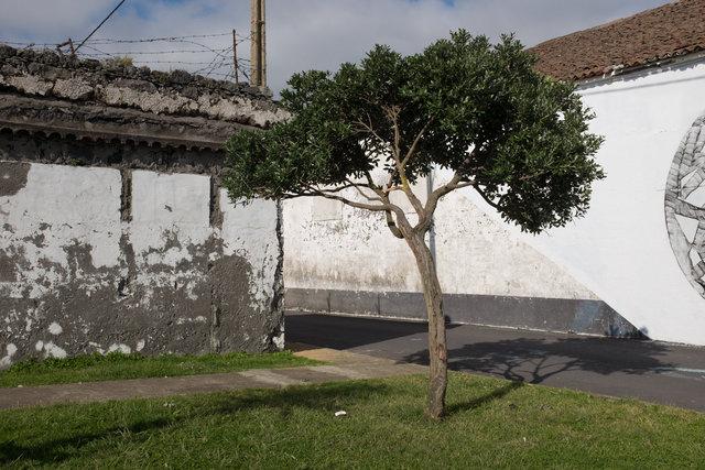 Azores 2017-5.jpg