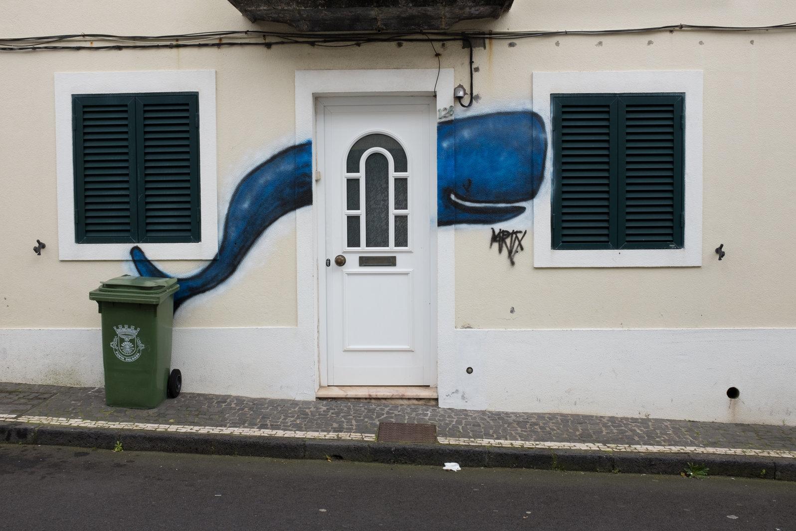 Azores 2017-30.jpg