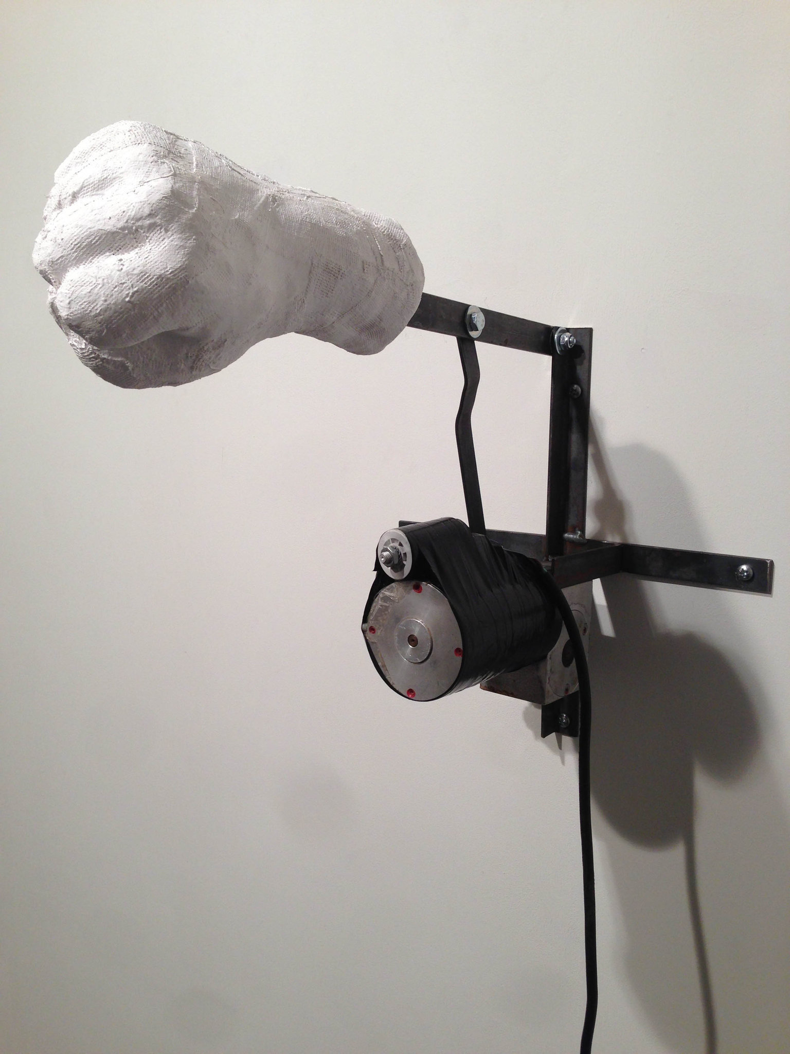 Oscar Peters, Protest, 2014