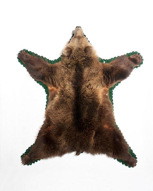 26_Bear.jpg