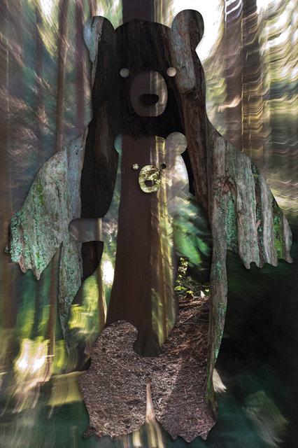 TreeBear-2.jpg