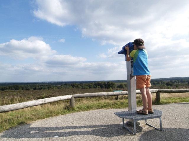 sallandse heuvelrug - uitzichtspunt haarlerberg