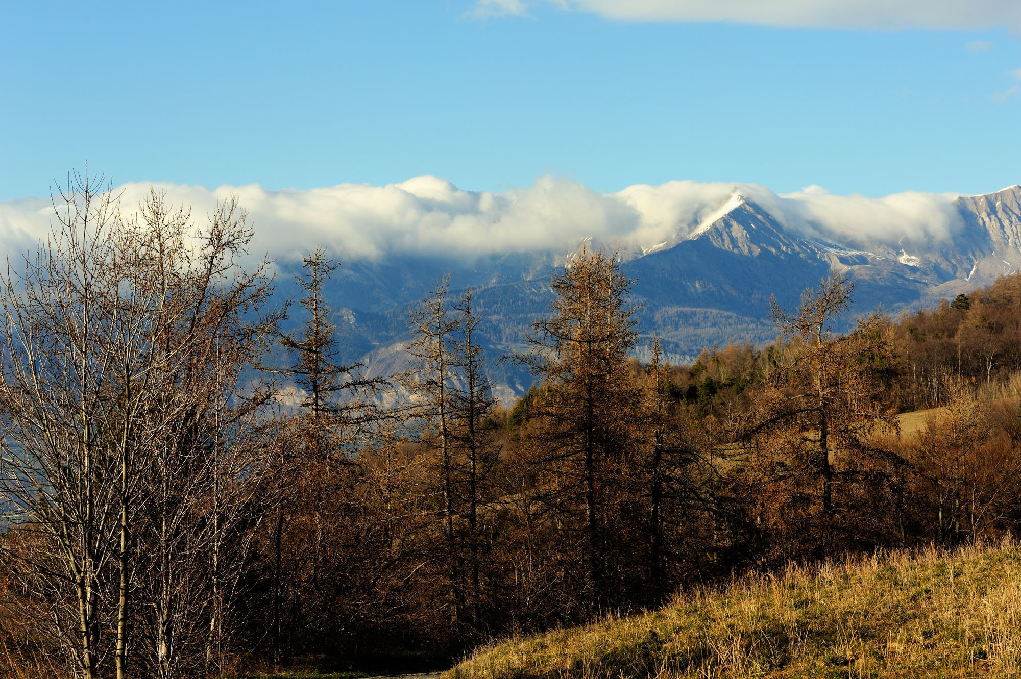 Alpes de Hautes-Provence