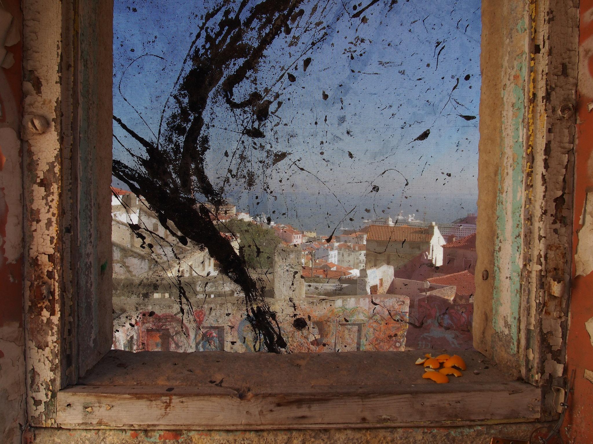 Framed in Lisbon