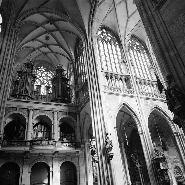 Cathedral #3