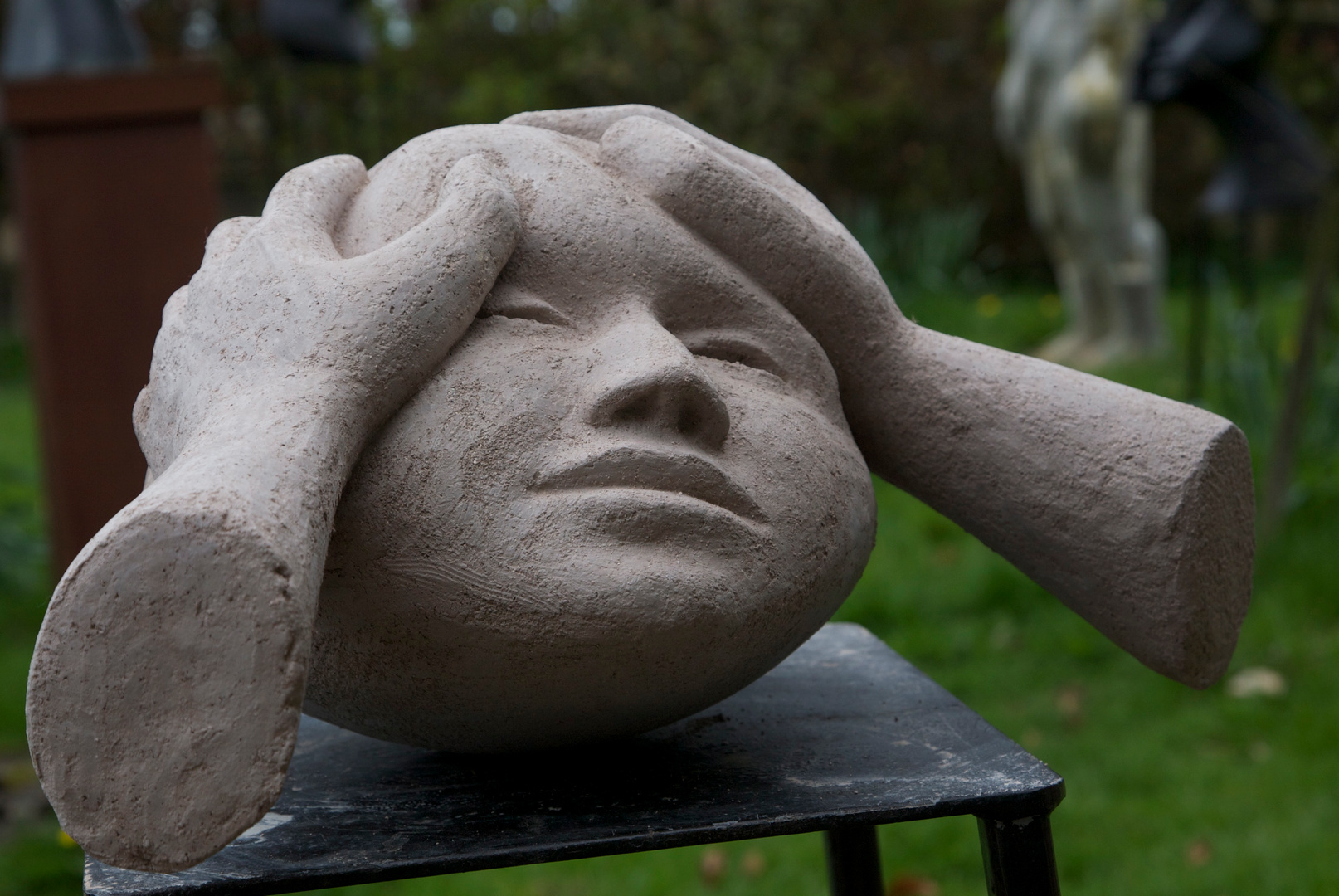 Sculpting a Head  (hands and Head 2 )