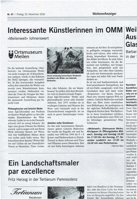 Meilener Tagblatt, 25.11.2016
