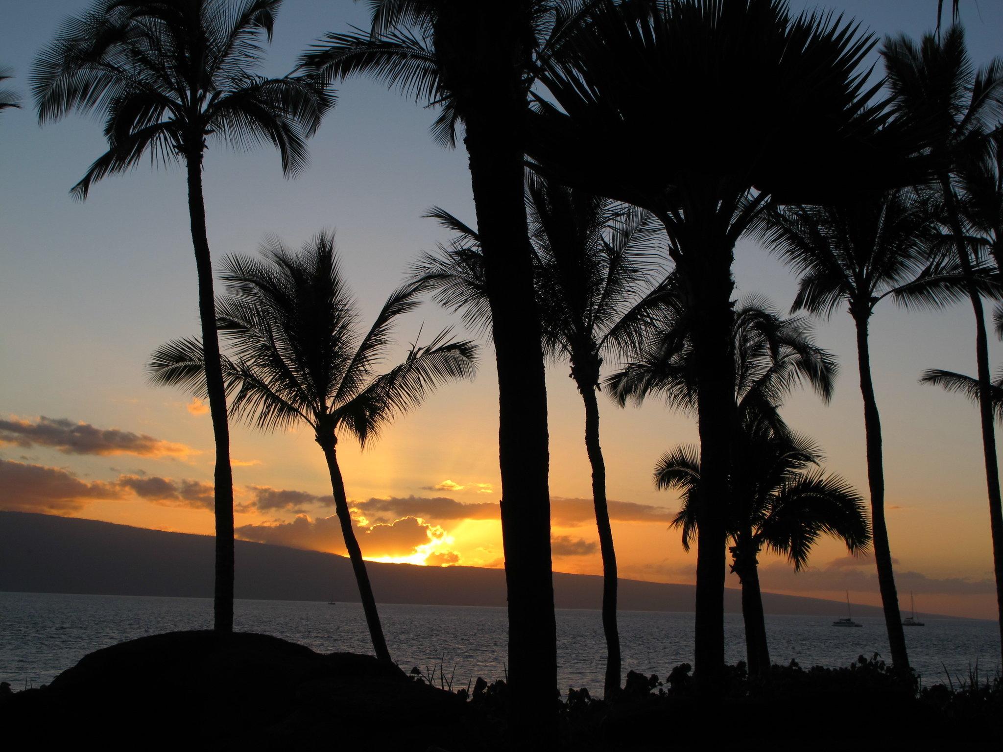 © CORDAY - Lahaina Aloha