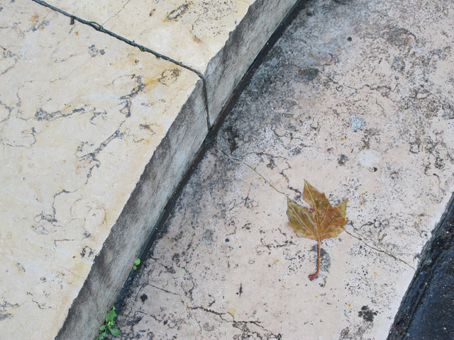 © CORDAY - Leaf on Marble