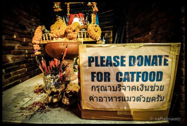bangkok2015_NOB_3111February 18, 2015_75dpi.jpg