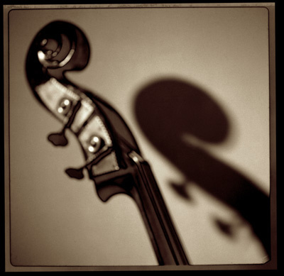 Bass Head_MGPfrt.jpg