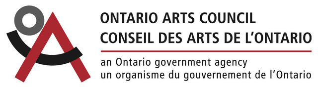 Visual Arts Mid Career Project Grant 2017