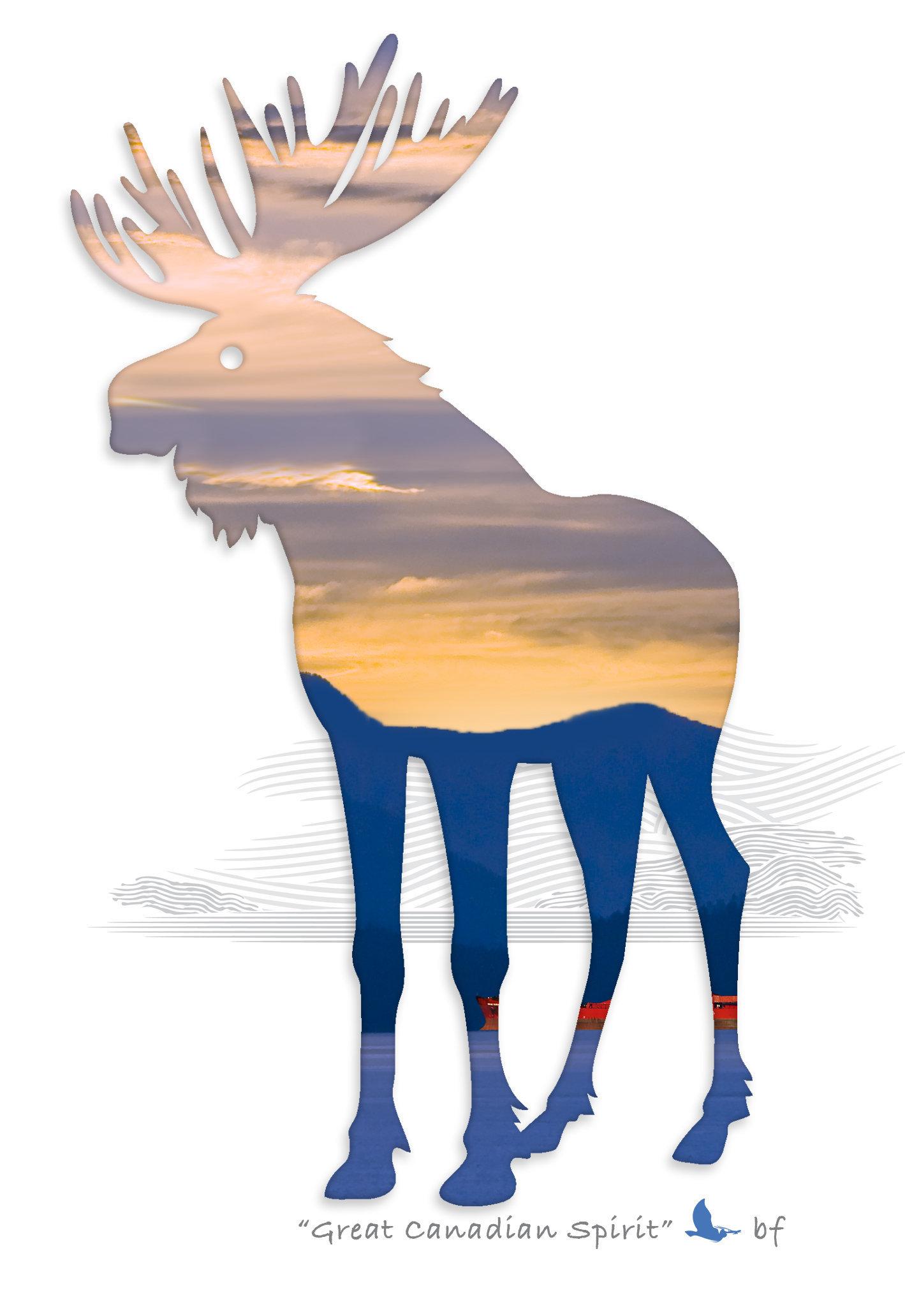 Moose-07.jpg
