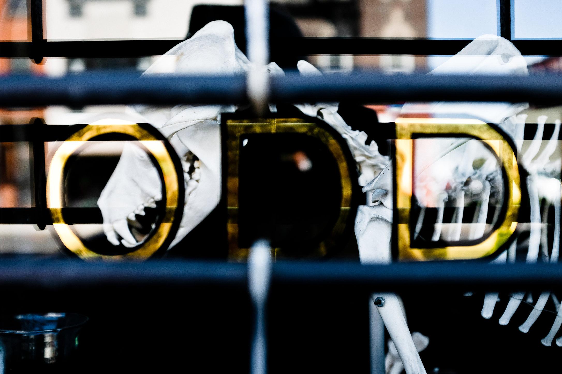 Gowanus-5.jpg