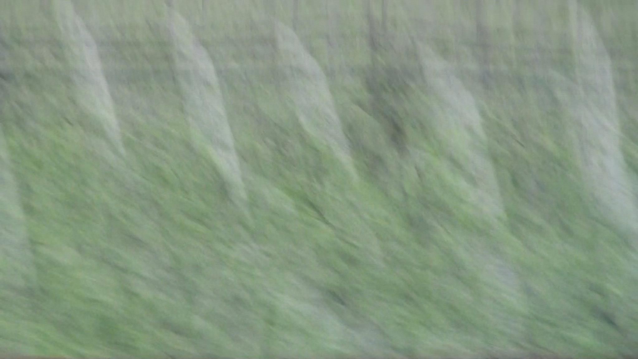 Screen Shot 2014-02-10 at 10.42.52 PM.png