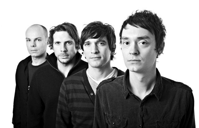 'Animal Kingdom' - Musicians