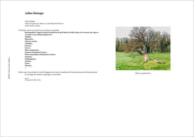 La Biodiv de mon territoire4.jpg
