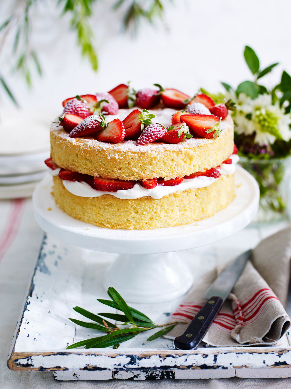 Andy-Lewis©Food-photographer_Food-Photography_Weight-Watchers_Lime&Strawberry-Sponge-Cake.jpg