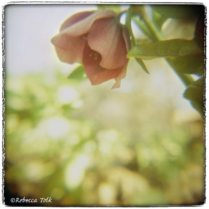10-03-04-09.jpg