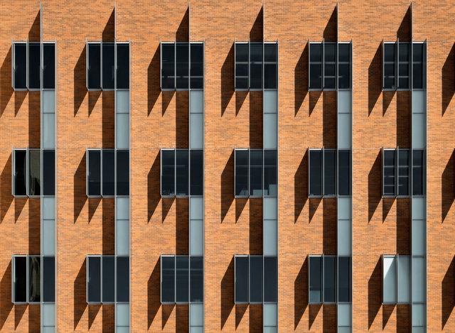 Fin Shadows.jpg