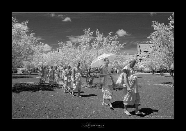 Cambodia monks2.jpg