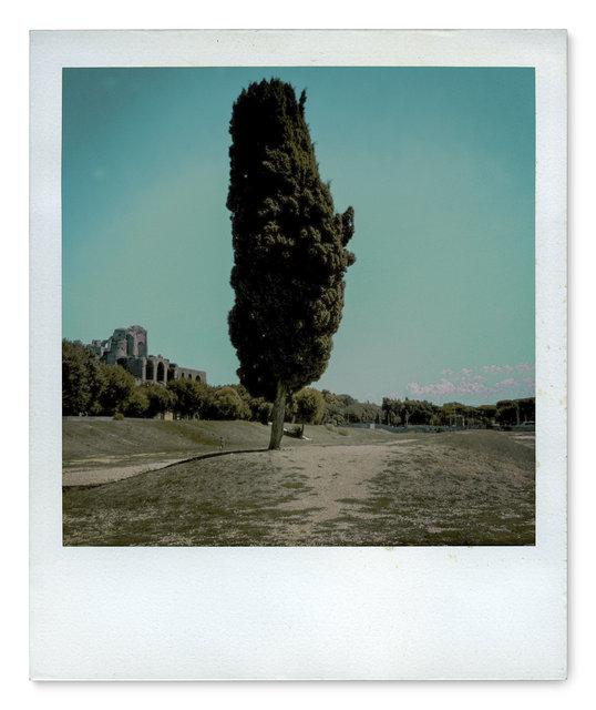 009_Polaroid SX70_IMG_2083.jpg