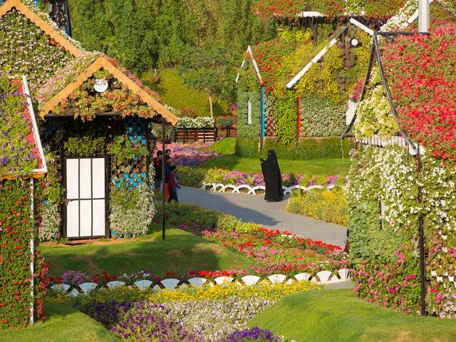 Dubai Miracle Garden - Dubai