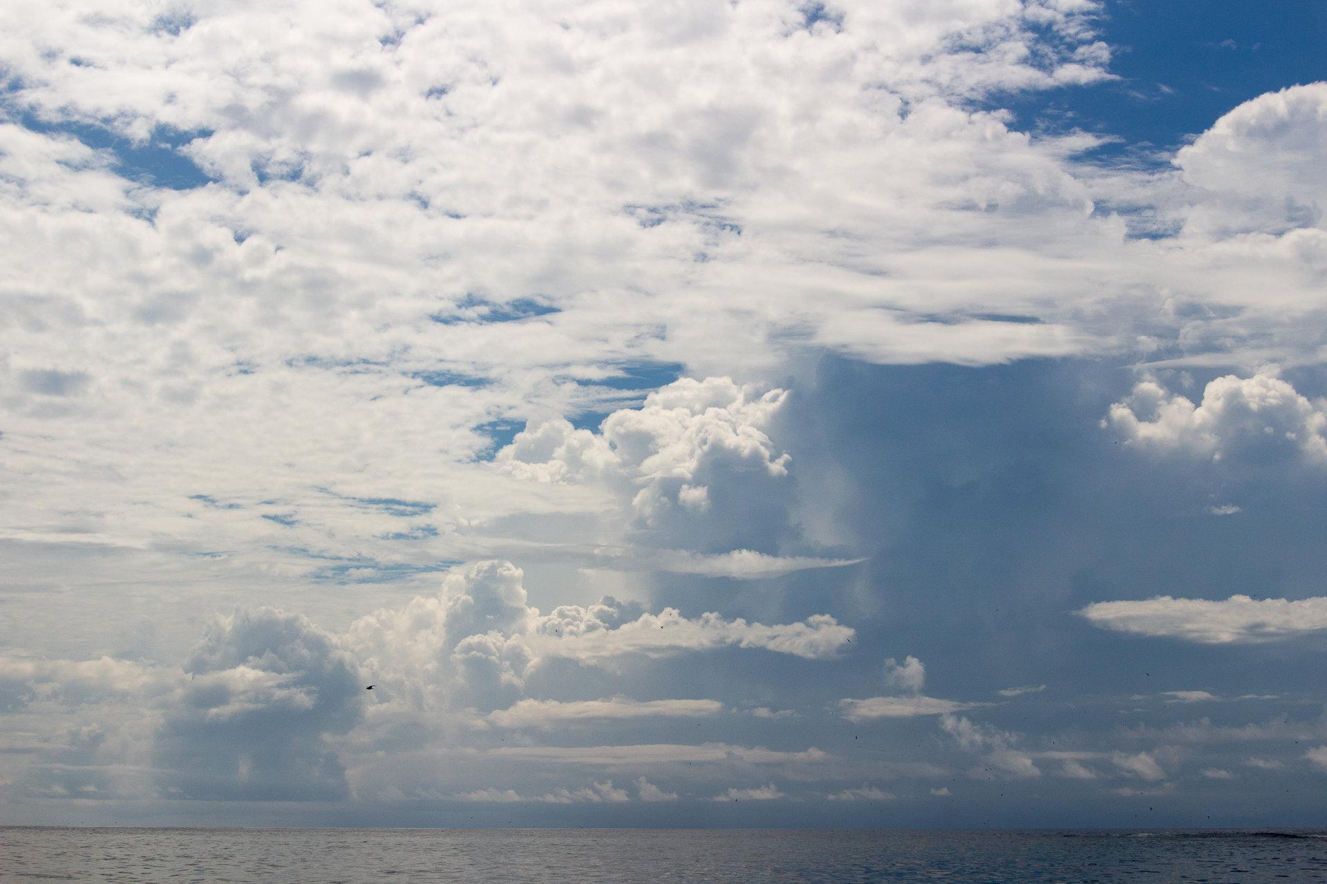 150420_Galapagos-1382.jpg