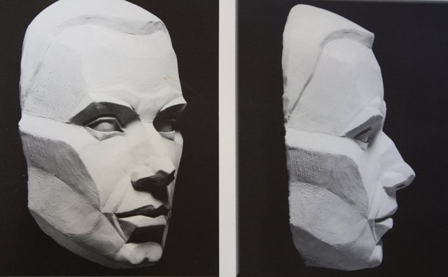 PLANES OF THE FACE  copyright by Philipe Faraut
