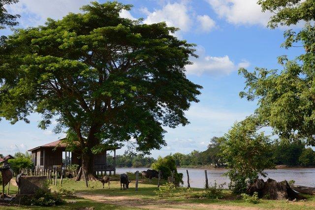 Laos_015.jpg