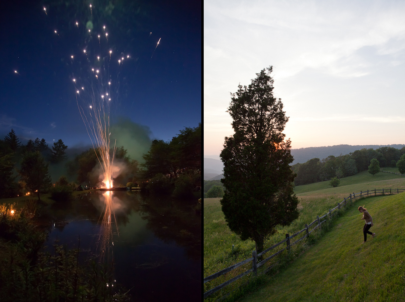 fireworks tree pair.jpg