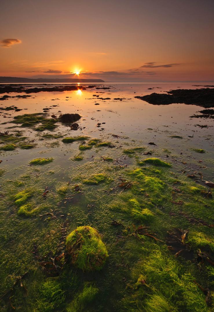 Clonea Dawn, Dungarvan, Co. Waterford