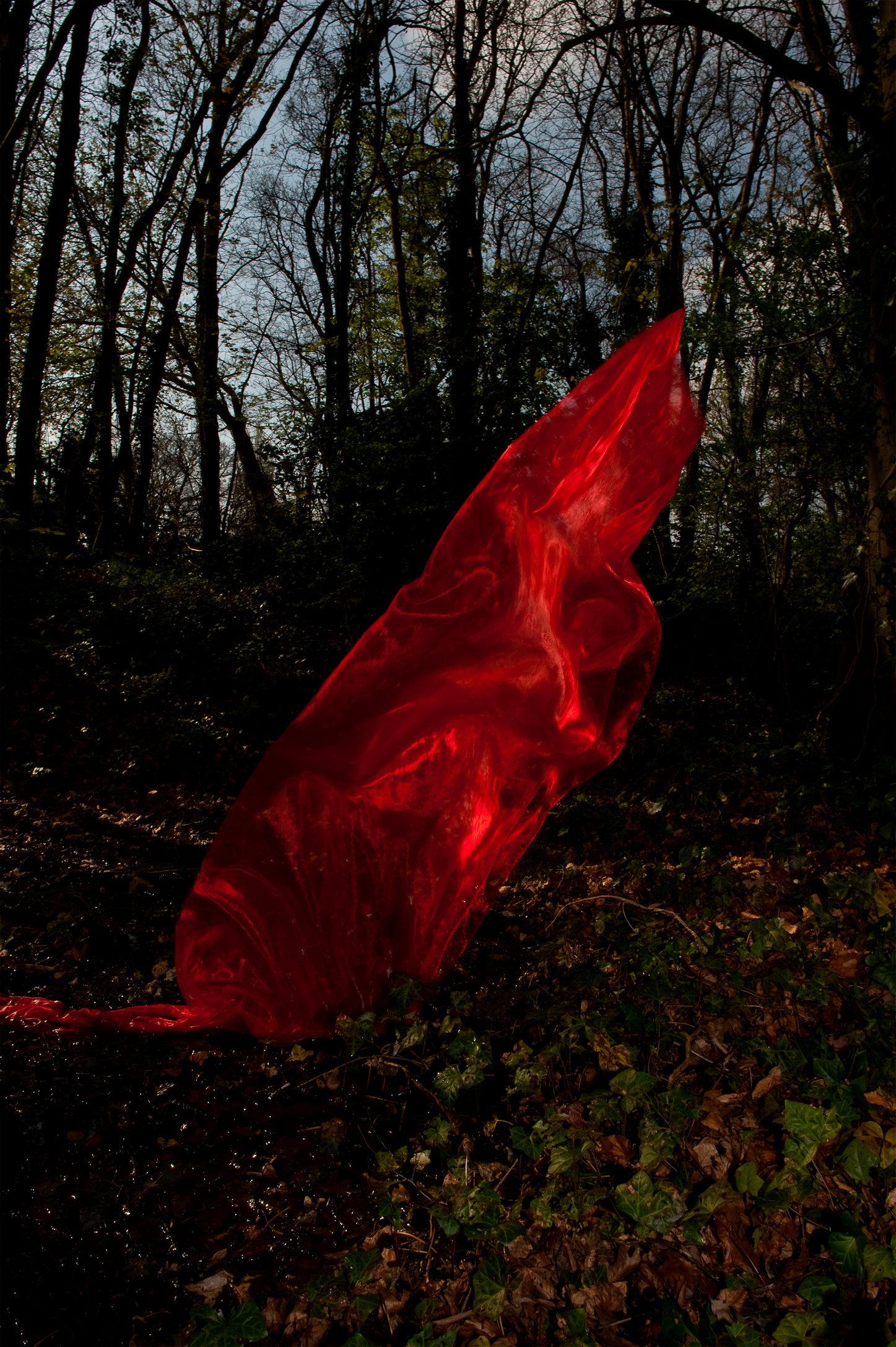 Cinderella-_1-1_MvanLaake_A203_2012.jpg