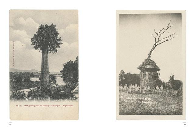 Kasmin's Postcards - Odd