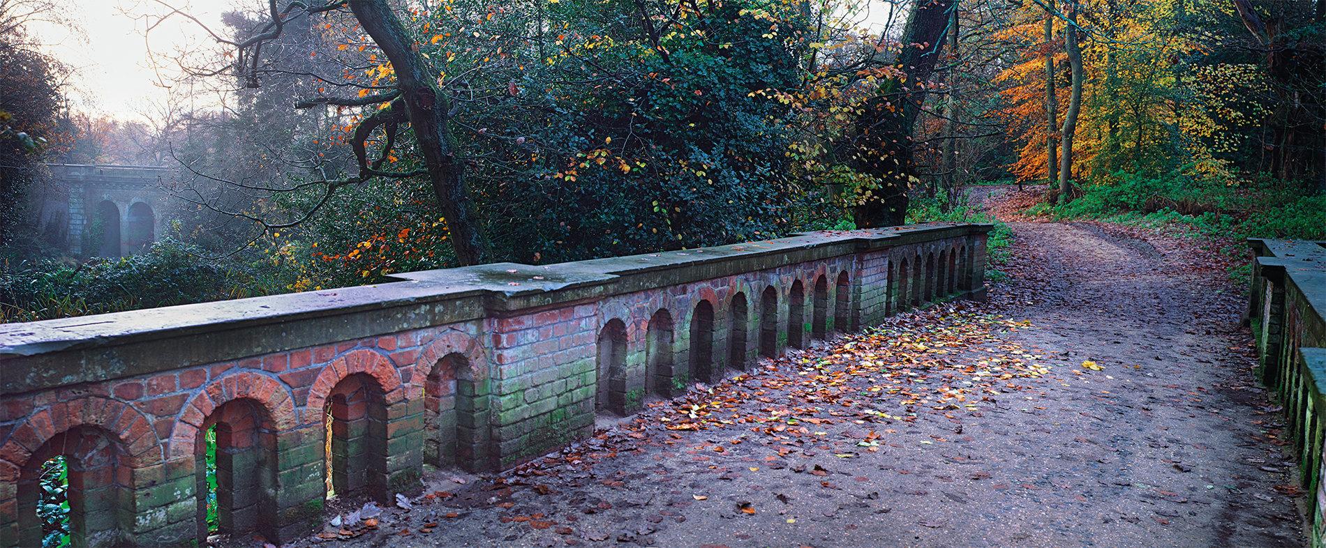 Hampstead Heath