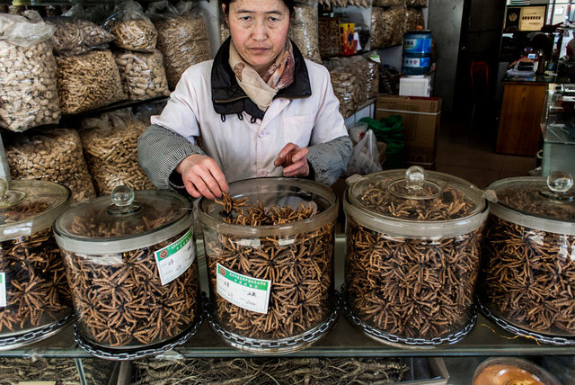 CTM Vendor in the TCM district in Kunming, Yunnan.