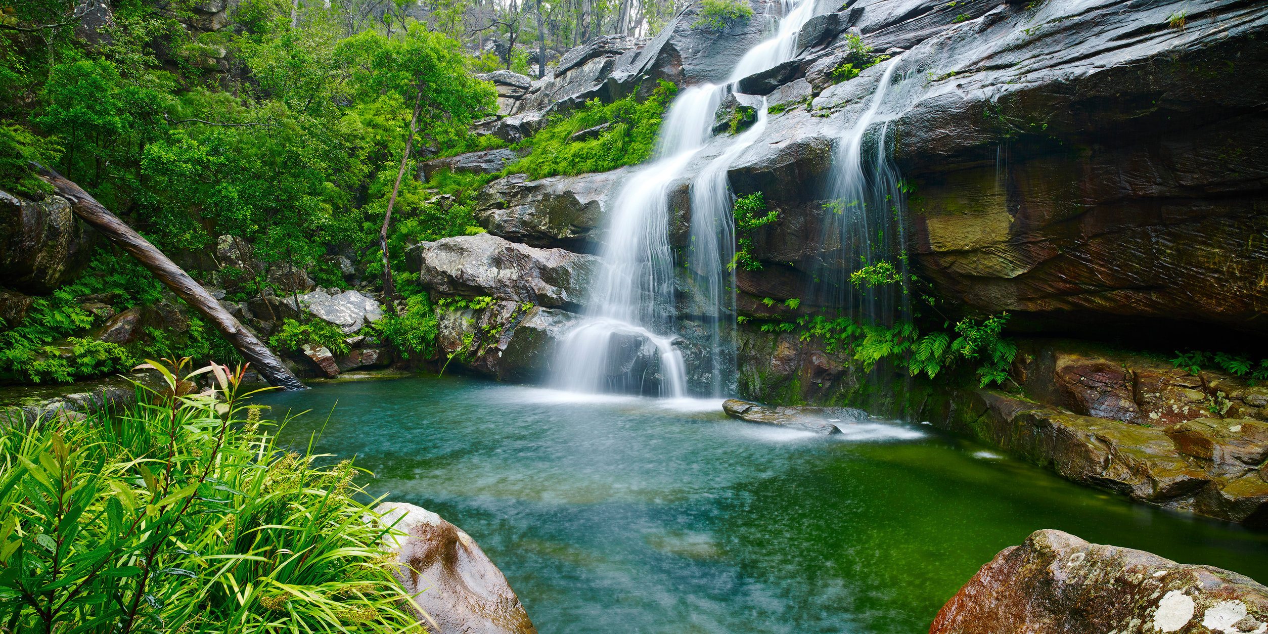 Wild-Swimming-Australia©Swimming-Hole_Scouts-Waterfall-SherwoodNR_Scouts-Waterfall_071_AndyLewis_PrintCrop.jpg