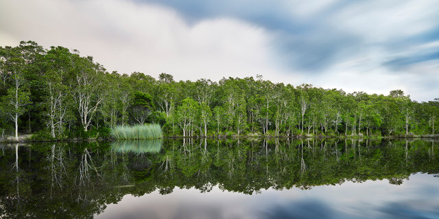 Wild-Swimming-Australia©Swimming-Hole_tyagarah-tea-tree-lake_CF066588_Andy-Lewis_PrintCrop.jpg