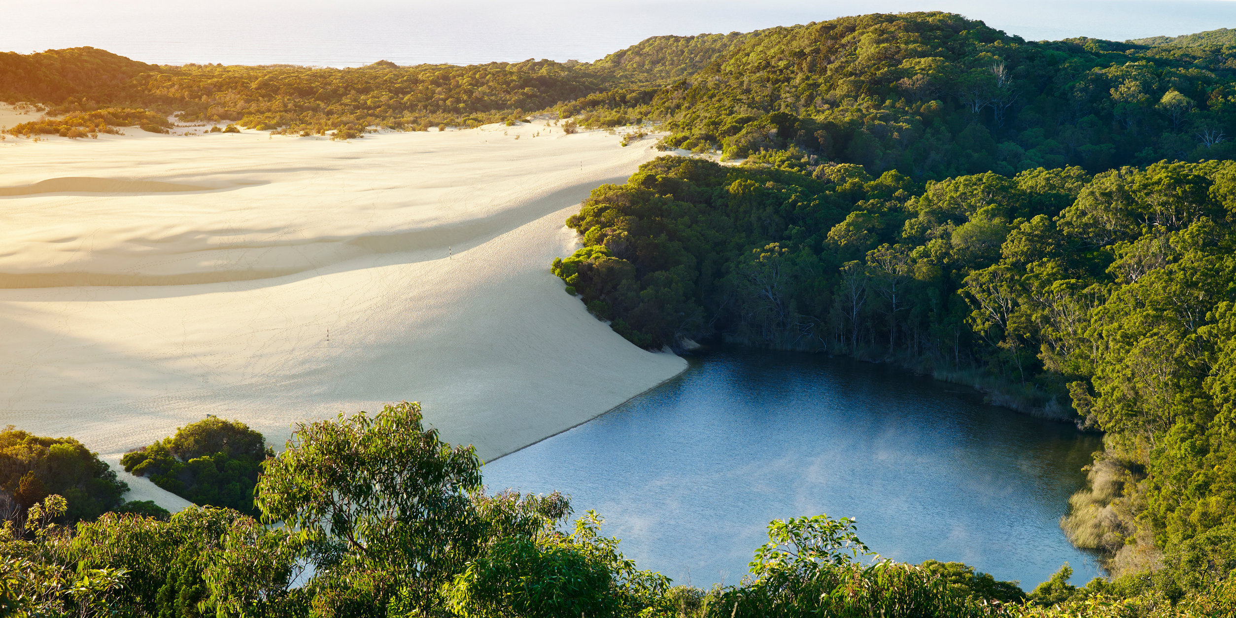 Wild-Swimming-Australia©Swimming-Hole_Queensland_Fraser-Island_lake-Wabby_074_Andy-lewis_PrintCrop.jpg