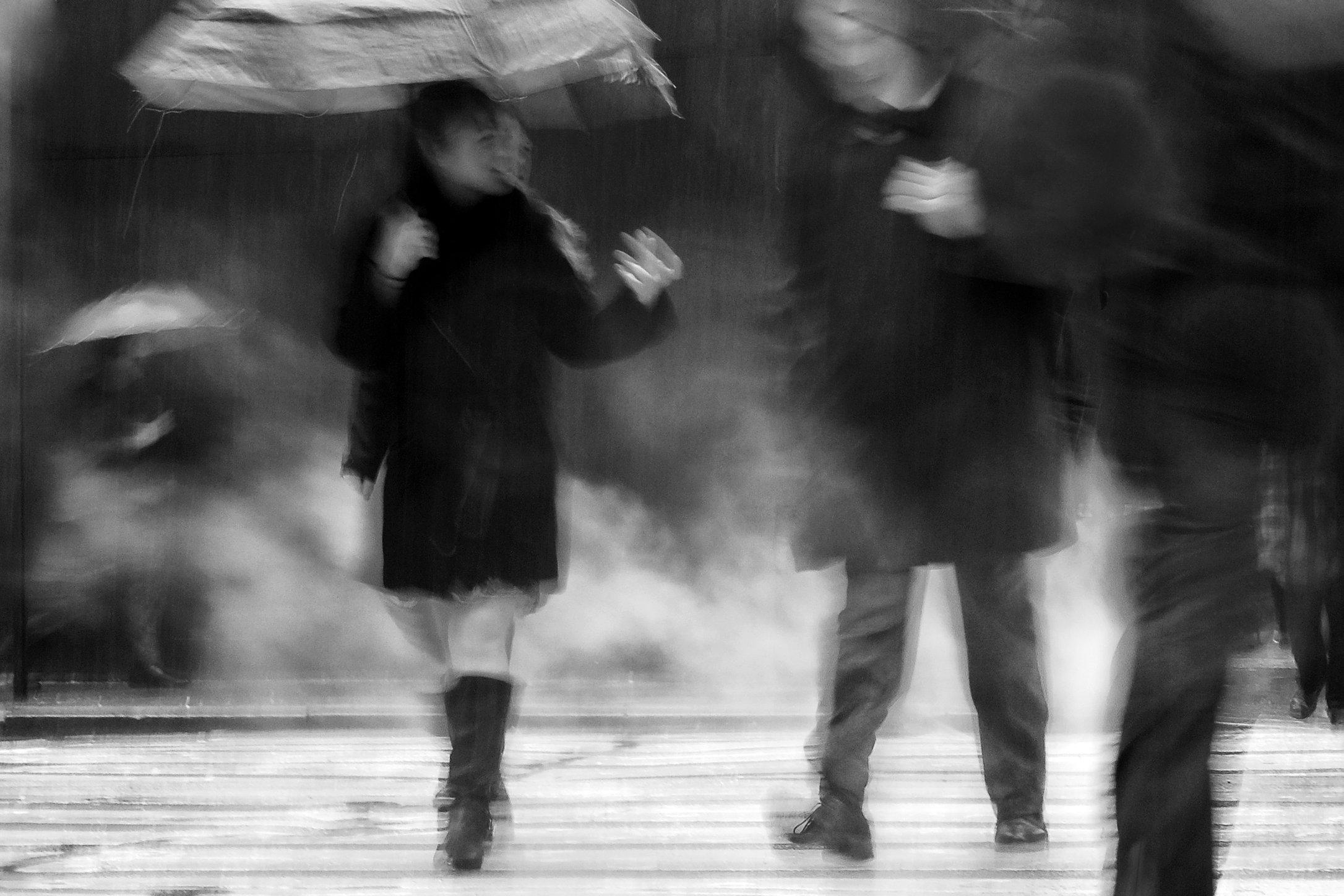 foggy-umbrellas.jpg