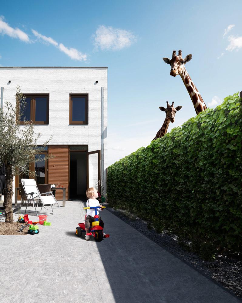Client: Gemeente Hoogvliet