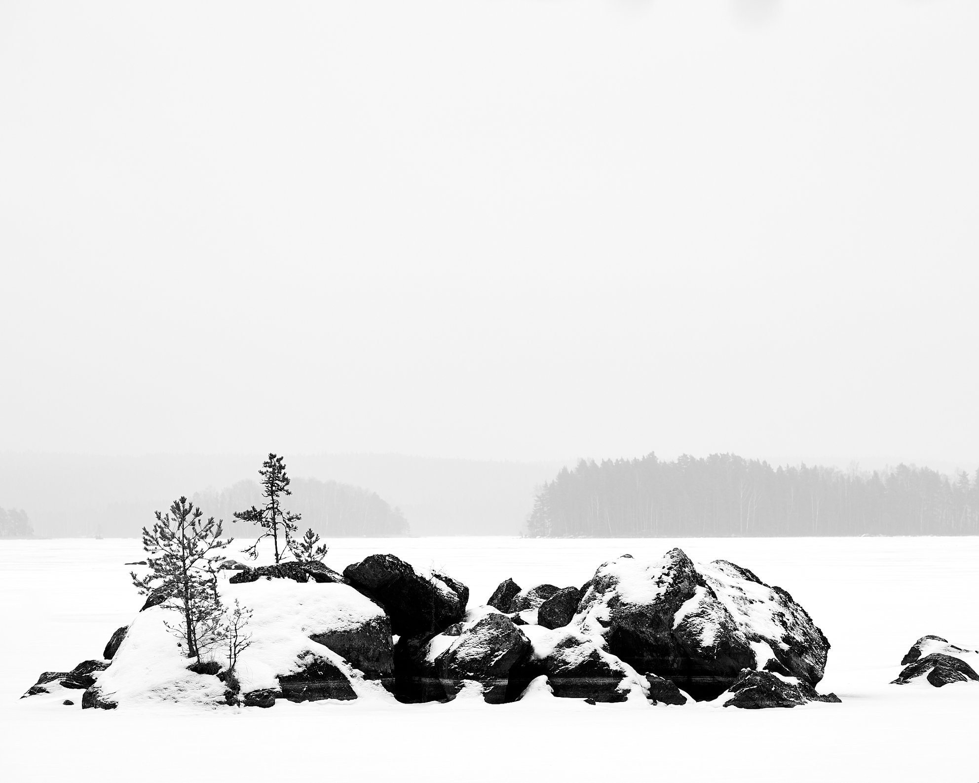 Rocks and Small Pine in Winter
