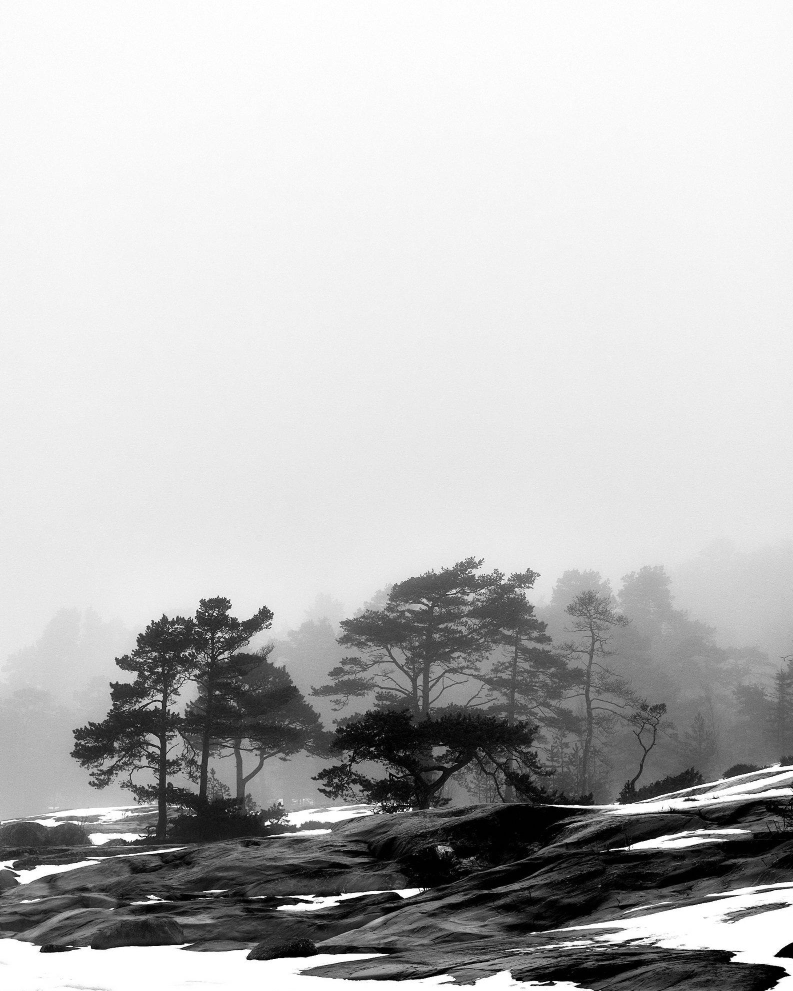 2018-04-05-Porkkala-0061.jpg