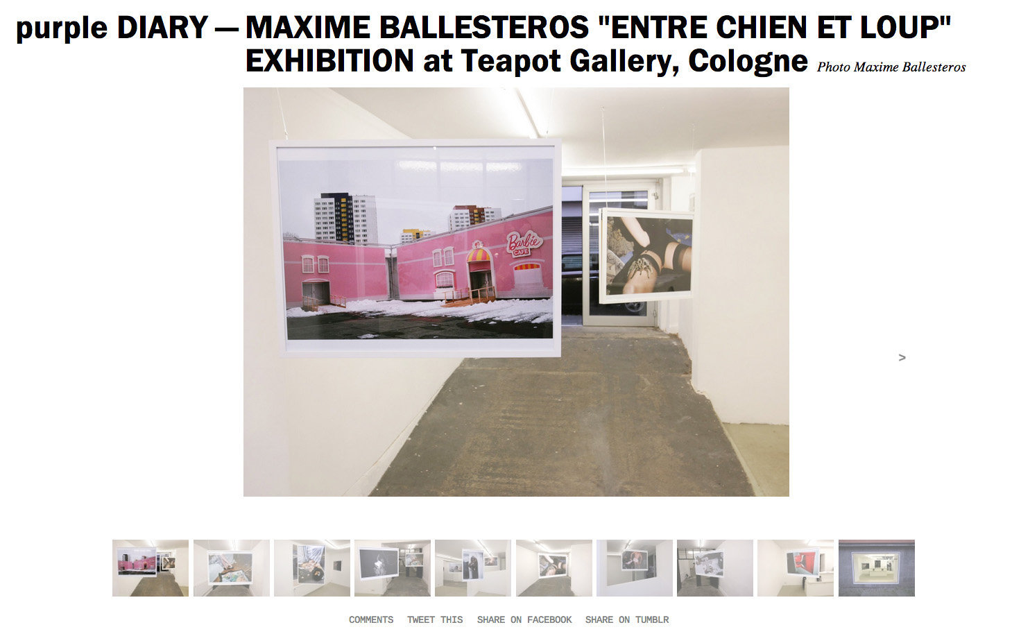 purple DIARY   MAXIME BALLESTEROS  ENTRE CHIEN ET LOUP  EXHIBITION at Teapot Gallery  Cologne.jpg