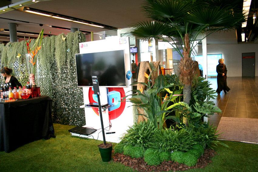 Jungle LG 093.jpg