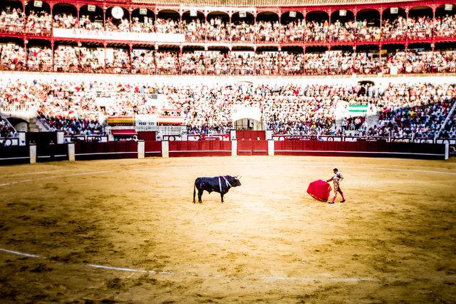 The Bullfight-94.jpg