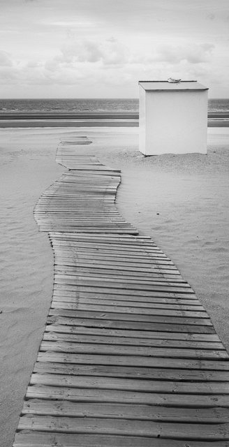 wait and sea.jpg