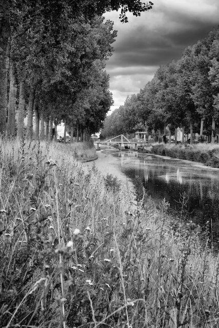 le long du canal.jpg