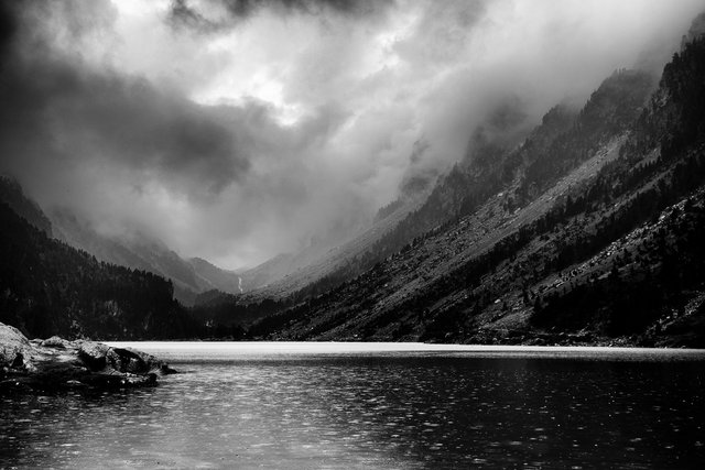 pyrenees  1.jpg